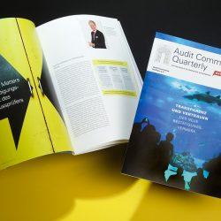Quarterly extra ›Bestätigungsvermerk‹, Titel (mit Hai) und Doppelseite 4/5