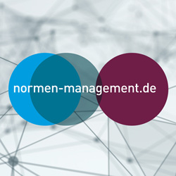 normen-management.de